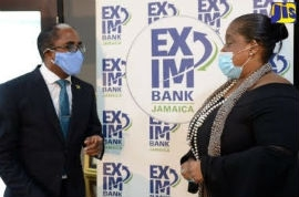 Minister of State in the Ministry of Industry, Investment and Commerce, Dr. Norman Dunn (left), speaking with EXIM Bank managing director, Lisa Bell before the start of a virtual webinar (JIS Photo).